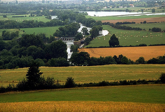 View of the Thames from Round Hill